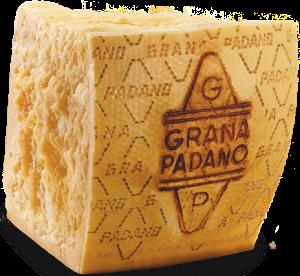 cheese platters salumeria