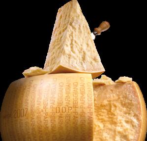parmesan cheese malta salumeria