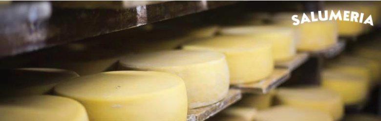 cheese-drying